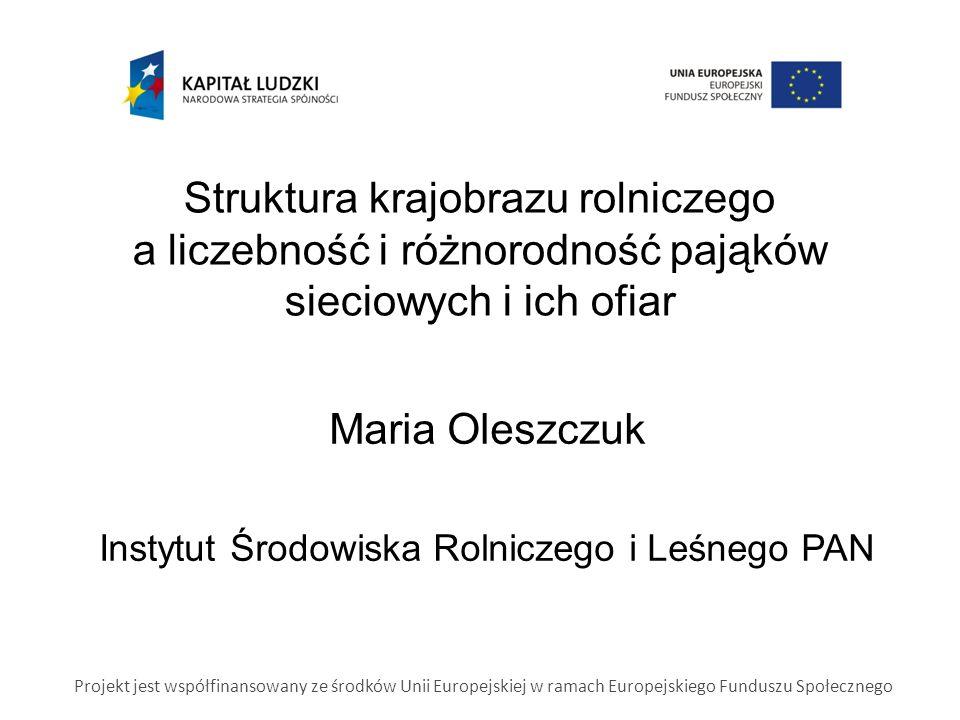 Struktura krajobrazu rolniczego a liczebność i różnorodność pająków sieciowych i ich ofiar Maria Oleszczuk Instytut Środowiska Rolniczego i Leśnego PAN Projekt jest współfinansowany ze środków Unii Europejskiej w ramach Europejskiego Funduszu Społecznego