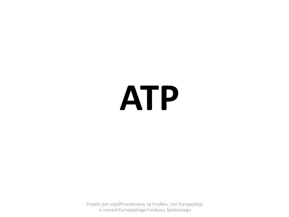 ATP Projekt jest współfinansowany ze środków Unii Europejskiej w ramach Europejskiego Funduszu Społecznego