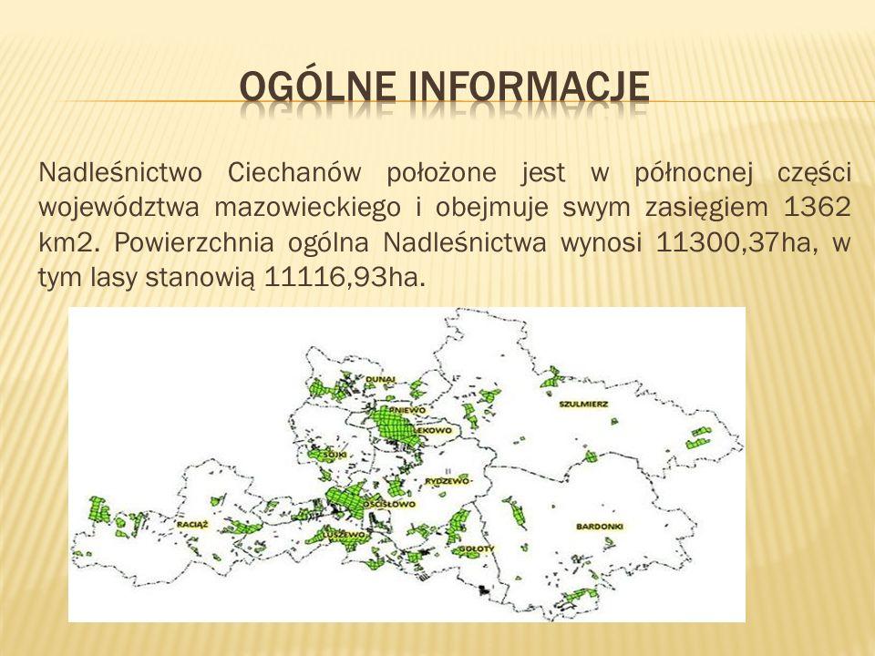 Nadleśnictwo Ciechanów położone jest w północnej części województwa mazowieckiego i obejmuje swym zasięgiem 1362 km2.