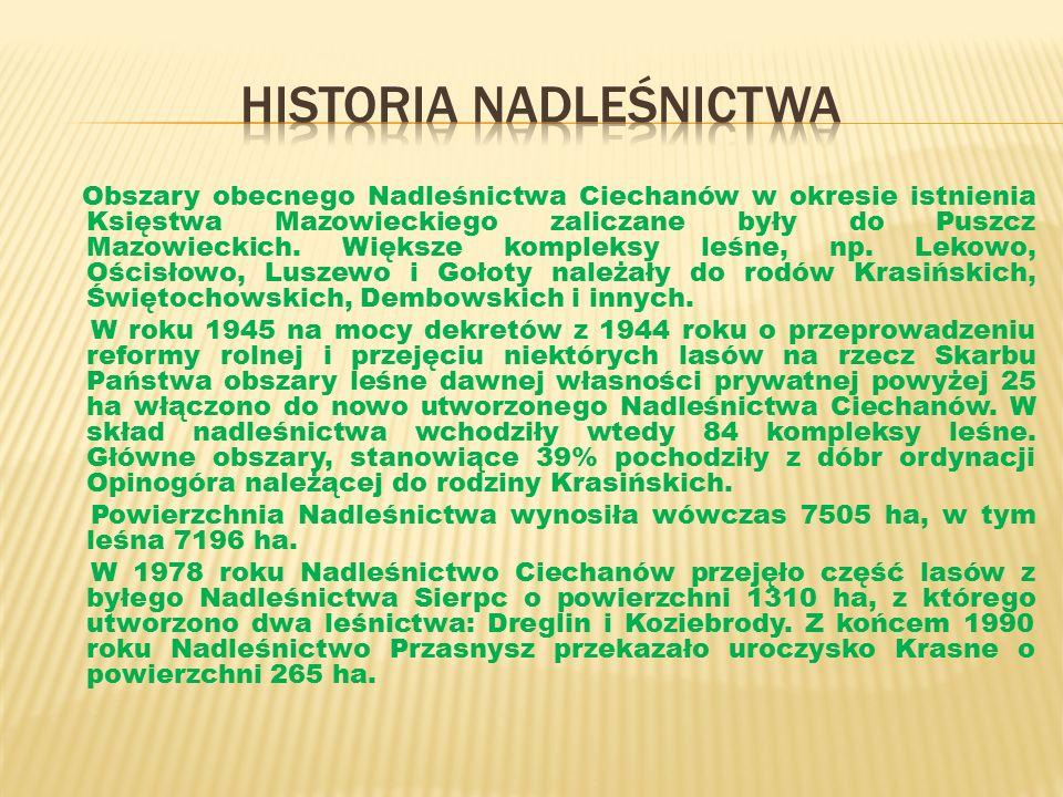 Obszary obecnego Nadleśnictwa Ciechanów w okresie istnienia Księstwa Mazowieckiego zaliczane były do Puszcz Mazowieckich.
