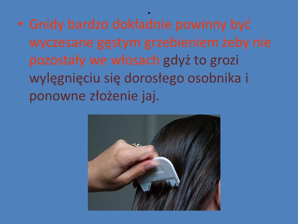 . Gnidy bardzo dokładnie powinny być wyczesane gęstym grzebieniem żeby nie pozostały we włosach gdyż to grozi wylęgnięciu się dorosłego osobnika i ponowne złożenie jaj.