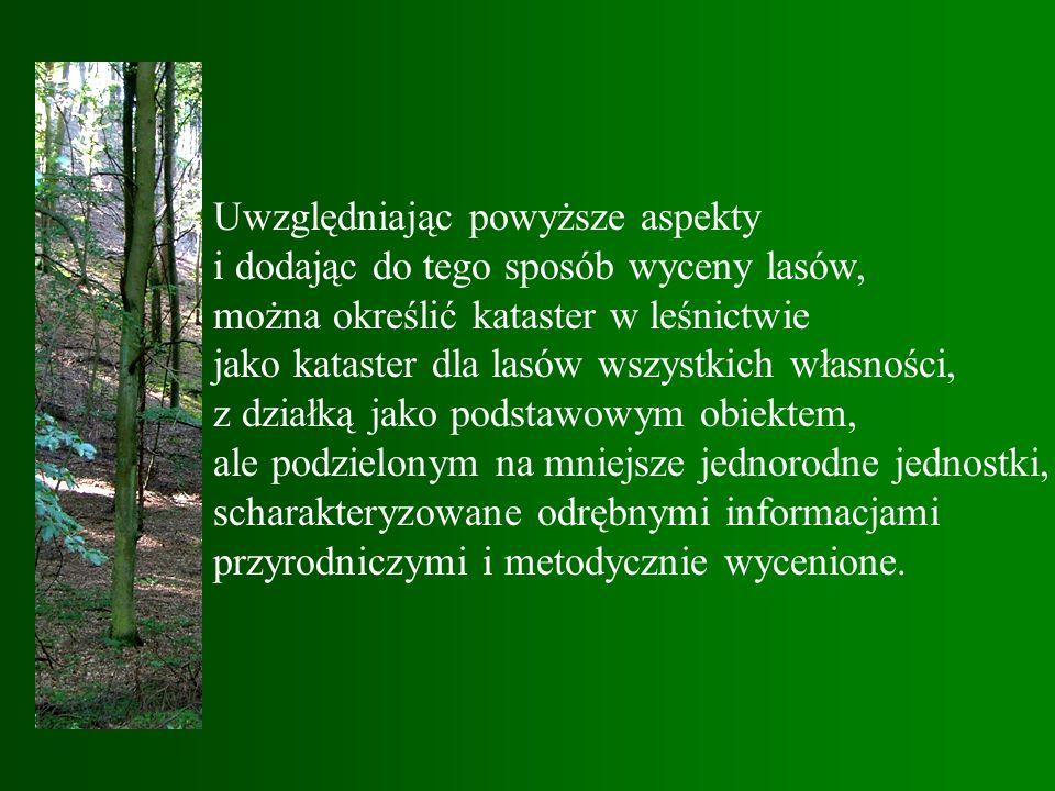 Uwzględniając powyższe aspekty i dodając do tego sposób wyceny lasów, można określić kataster w leśnictwie jako kataster dla lasów wszystkich własności, z działką jako podstawowym obiektem, ale podzielonym na mniejsze jednorodne jednostki, scharakteryzowane odrębnymi informacjami przyrodniczymi i metodycznie wycenione.