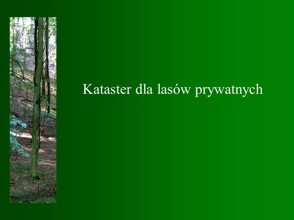 Kataster dla lasów prywatnych