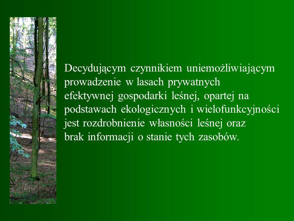 Decydującym czynnikiem uniemożliwiającym prowadzenie w lasach prywatnych efektywnej gospodarki leśnej, opartej na podstawach ekologicznych i wielofunkcyjności jest rozdrobnienie własności leśnej oraz brak informacji o stanie tych zasobów.