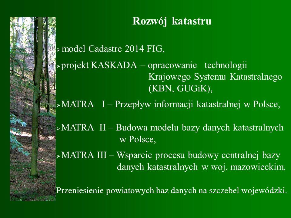 Rozwój katastru  model Cadastre 2014 FIG,  projekt KASKADA – opracowanie technologii Krajowego Systemu Katastralnego (KBN, GUGiK),  MATRA I – Przepływ informacji katastralnej w Polsce,  MATRA II – Budowa modelu bazy danych katastralnych w Polsce,  MATRA III – Wsparcie procesu budowy centralnej bazy danych katastralnych w woj.