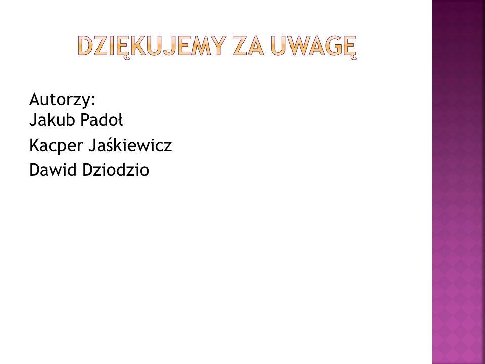 Autorzy: Jakub Padoł Kacper Jaśkiewicz Dawid Dziodzio