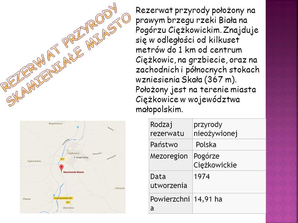 Rezerwat przyrody położony na prawym brzegu rzeki Biała na Pogórzu Ciężkowickim. Znajduje się w odległości od kilkuset metrów do 1 km od centrum Ciężk