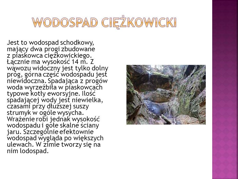 Jest to wodospad schodkowy, mający dwa progi zbudowane z piaskowca ciężkowickiego. Łącznie ma wysokość 14 m. Z wąwozu widoczny jest tylko dolny próg,