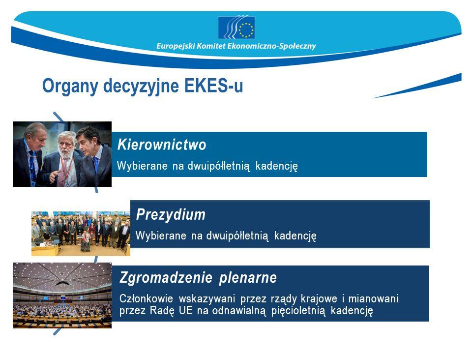 Kierownictwo Wybierane na dwuipółletnią kadencję Prezydium Wybierane na dwuipółletnią kadencję Zgromadzenie plenarne Członkowie wskazywani przez rządy krajowe i mianowani przez Radę UE na odnawialną pięcioletnią kadencję Organy decyzyjne EKES-u