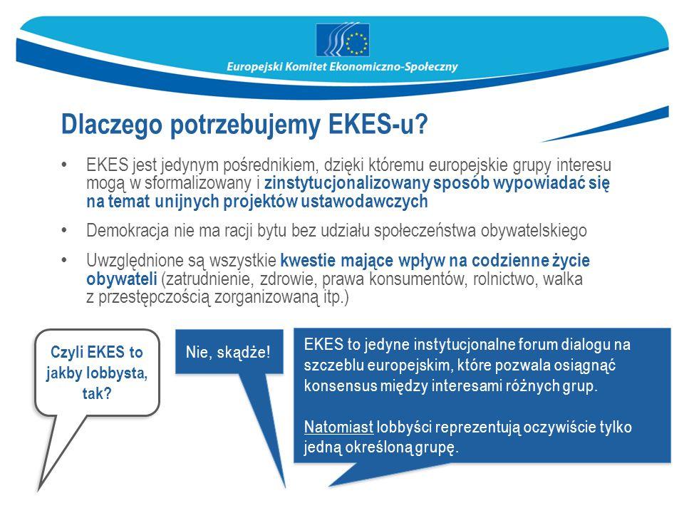 EKES to jedyne instytucjonalne forum dialogu na szczeblu europejskim, które pozwala osiągnąć konsensus między interesami różnych grup.