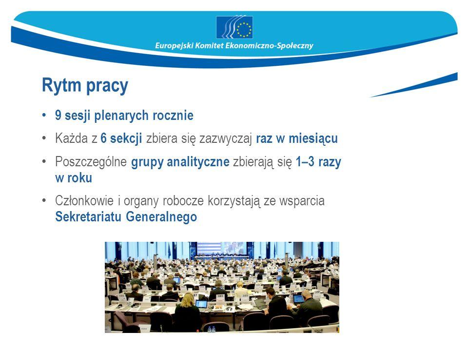 9 sesji plenarych rocznie Każda z 6 sekcji zbiera się zazwyczaj raz w miesiącu Poszczególne grupy analityczne zbierają się 1–3 razy w roku Członkowie i organy robocze korzystają ze wsparcia Sekretariatu Generalnego Rytm pracy