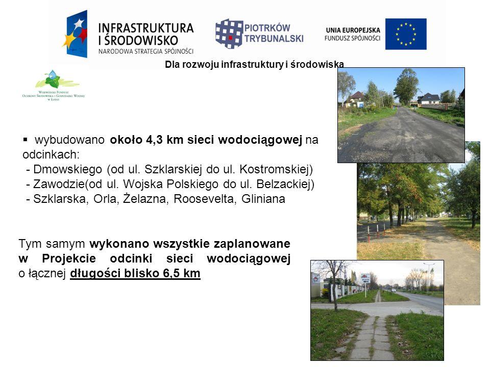 Dla rozwoju infrastruktury i środowiska Tym samym wykonano wszystkie zaplanowane w Projekcie odcinki sieci wodociągowej o łącznej długości blisko 6,5 km  wybudowano około 4,3 km sieci wodociągowej na odcinkach: - Dmowskiego (od ul.