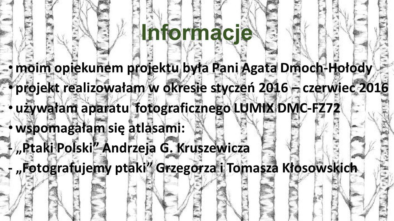 """Informacje moim opiekunem projektu była Pani Agata Dmoch-Hołody projekt realizowałam w okresie styczeń 2016 – czerwiec 2016 używałam aparatu fotograficznego LUMIX DMC-FZ72 wspomagałam się atlasami: - """"Ptaki Polski Andrzeja G."""