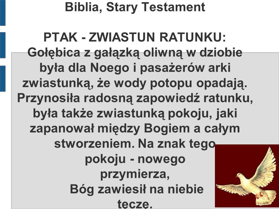 Biblia, Stary Testament PTAK - ZWIASTUN RATUNKU: Gołębica z gałązką oliwną w dziobie była dla Noego i pasażerów arki zwiastunką, że wody potopu opadają.
