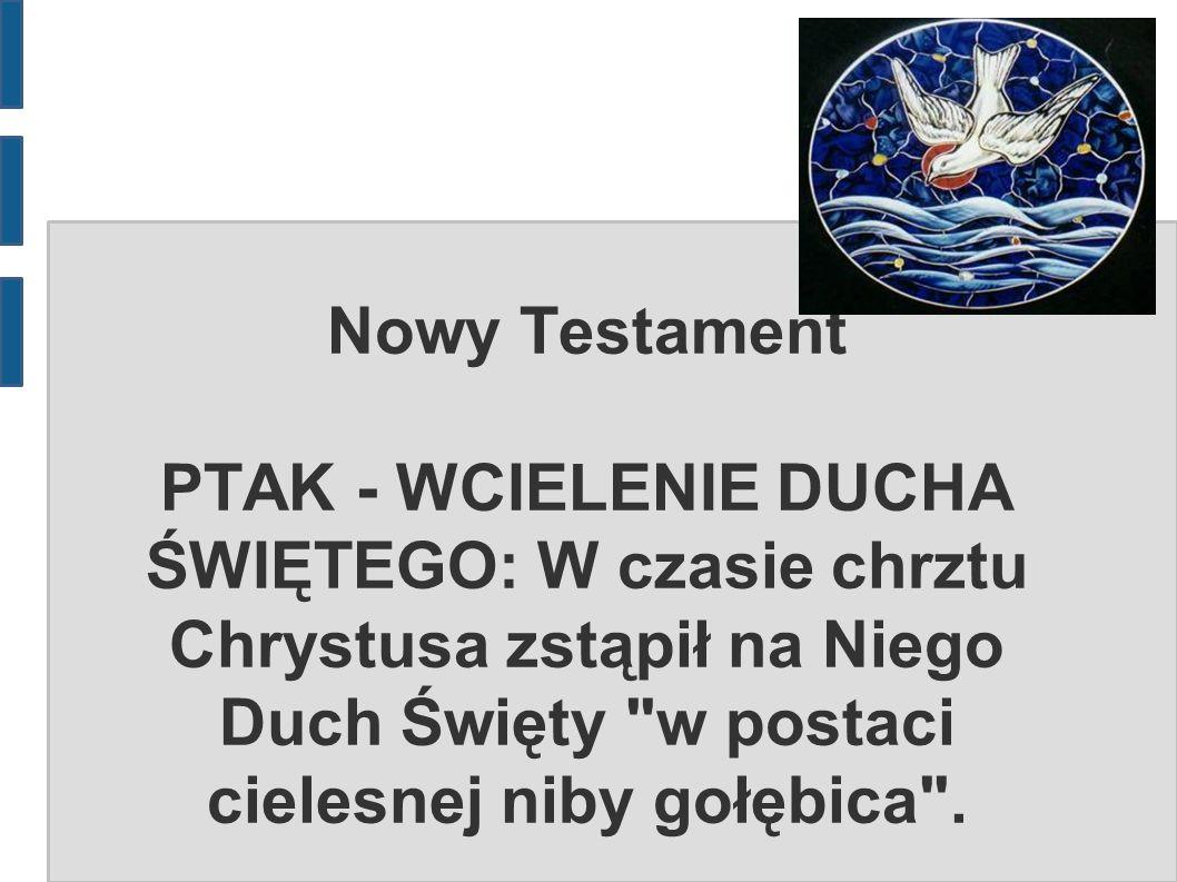 Nowy Testament PTAK - WCIELENIE DUCHA ŚWIĘTEGO: W czasie chrztu Chrystusa zstąpił na Niego Duch Święty w postaci cielesnej niby gołębica .