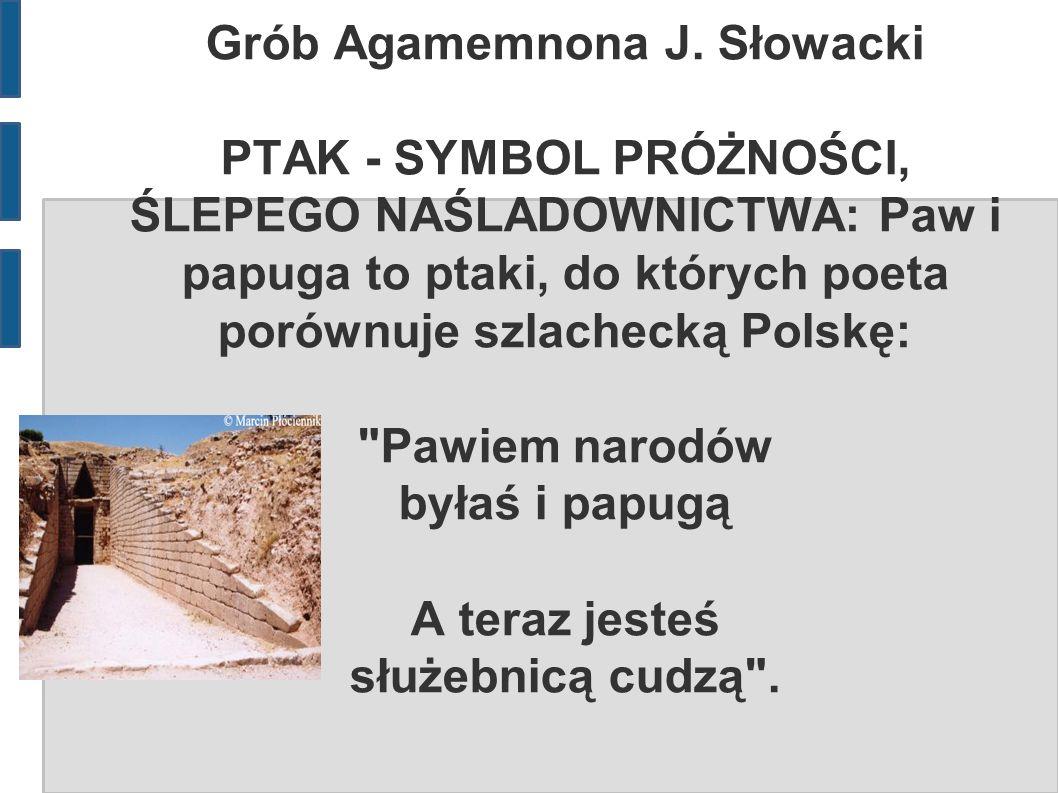 Grób Agamemnona J. Słowacki PTAK - SYMBOL PRÓŻNOŚCI, ŚLEPEGO NAŚLADOWNICTWA: Paw i papuga to ptaki, do których poeta porównuje szlachecką Polskę: