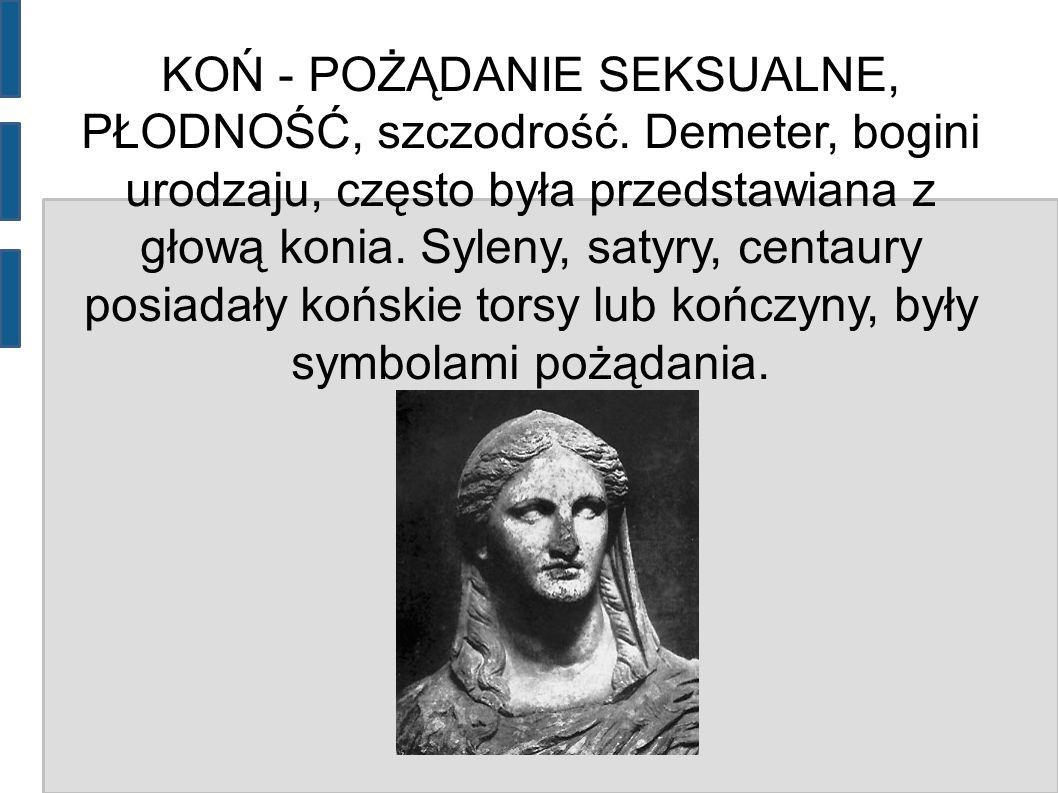 KOŃ - POŻĄDANIE SEKSUALNE, PŁODNOŚĆ, szczodrość. Demeter, bogini urodzaju, często była przedstawiana z głową konia. Syleny, satyry, centaury posiadały