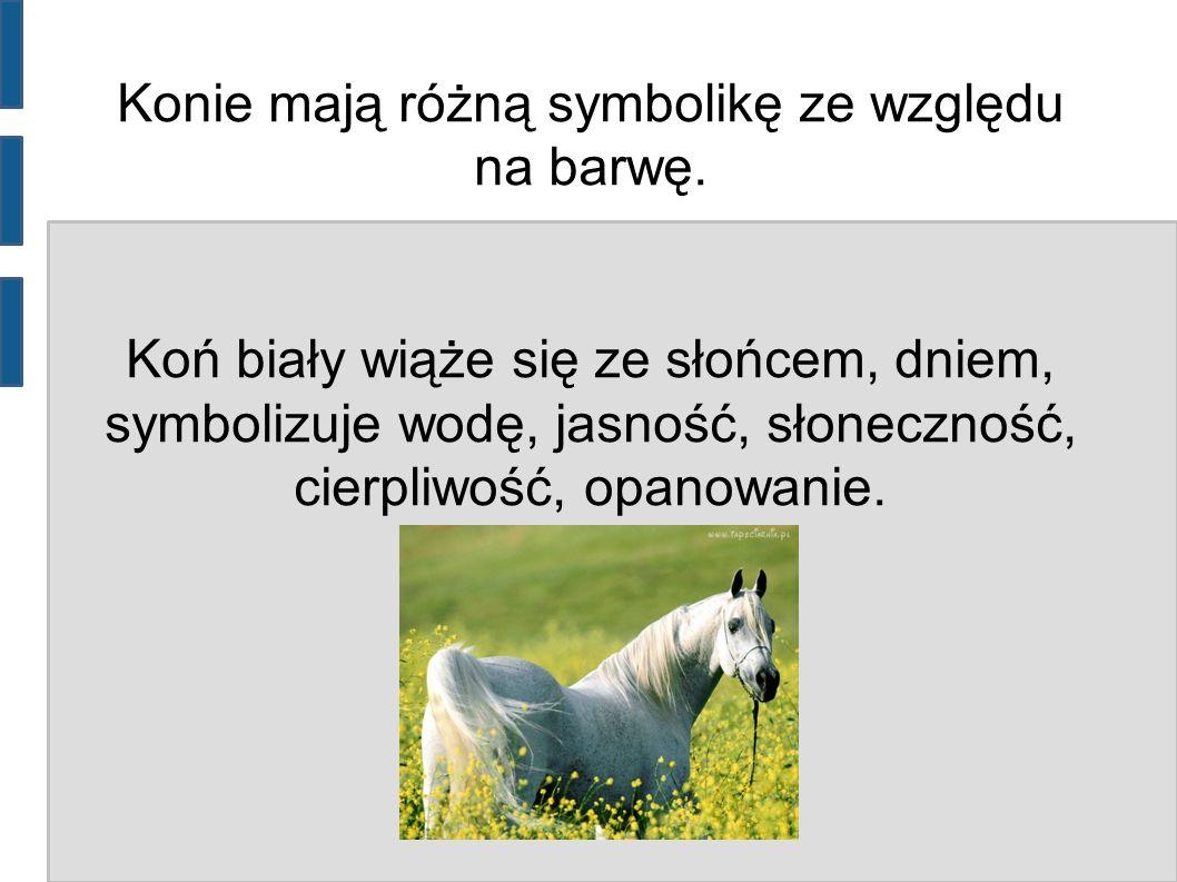 Konie mają różną symbolikę ze względu na barwę. Koń biały wiąże się ze słońcem, dniem, symbolizuje wodę, jasność, słoneczność, cierpliwość, opanowanie