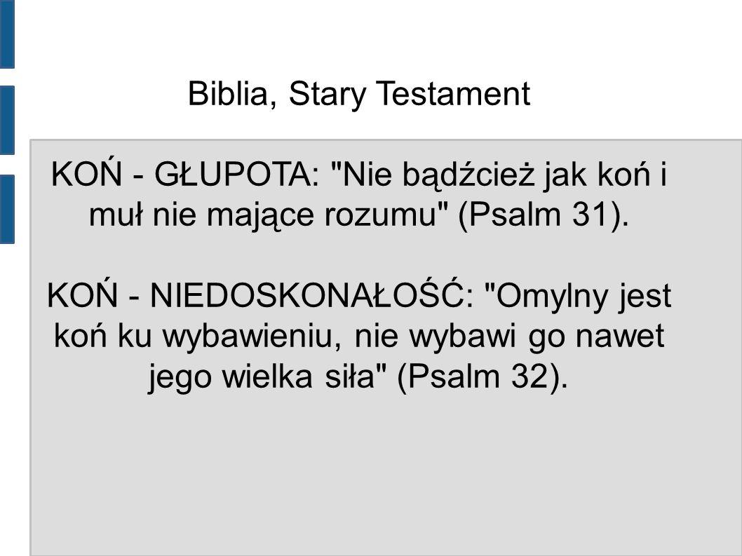 Biblia, Stary Testament KOŃ - GŁUPOTA: Nie bądźcież jak koń i muł nie mające rozumu (Psalm 31).