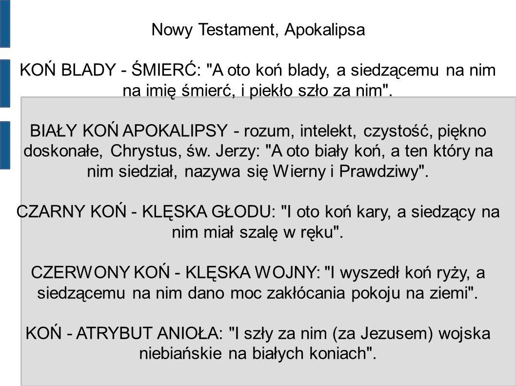 Nowy Testament, Apokalipsa KOŃ BLADY - ŚMIERĆ: A oto koń blady, a siedzącemu na nim na imię śmierć, i piekło szło za nim .