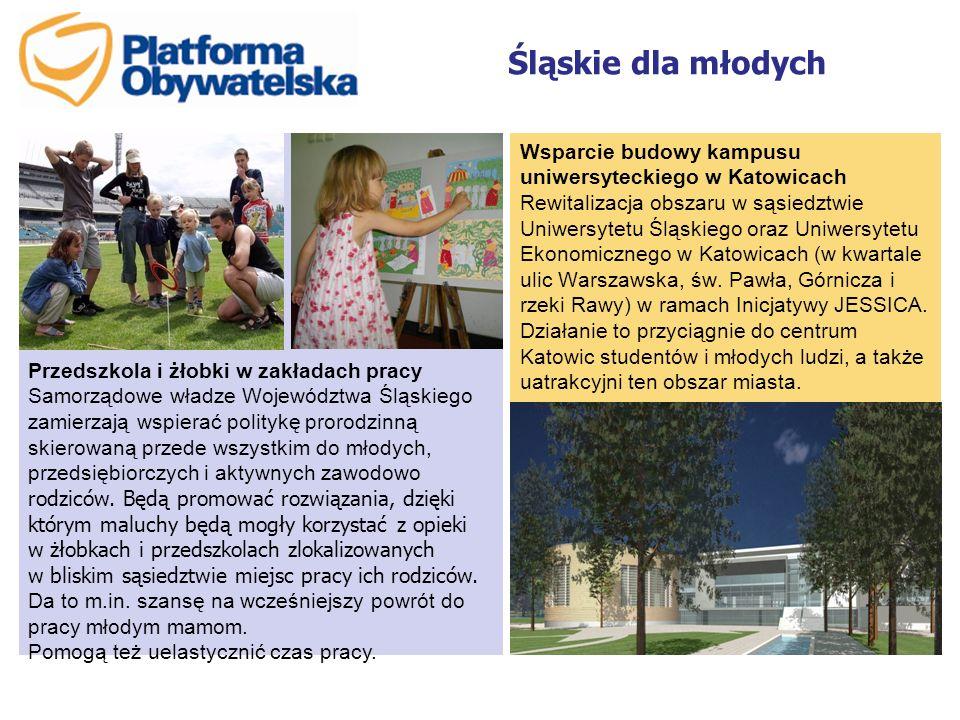Śląskie dla młodych Wsparcie budowy kampusu uniwersyteckiego w Katowicach Rewitalizacja obszaru w sąsiedztwie Uniwersytetu Śląskiego oraz Uniwersytetu Ekonomicznego w Katowicach (w kwartale ulic Warszawska, św.