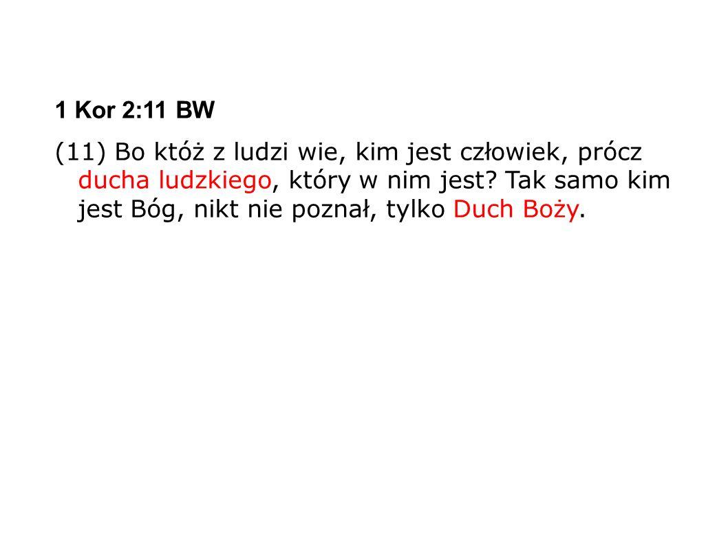 1 Kor 2:11 BW (11) Bo któż z ludzi wie, kim jest człowiek, prócz ducha ludzkiego, który w nim jest.