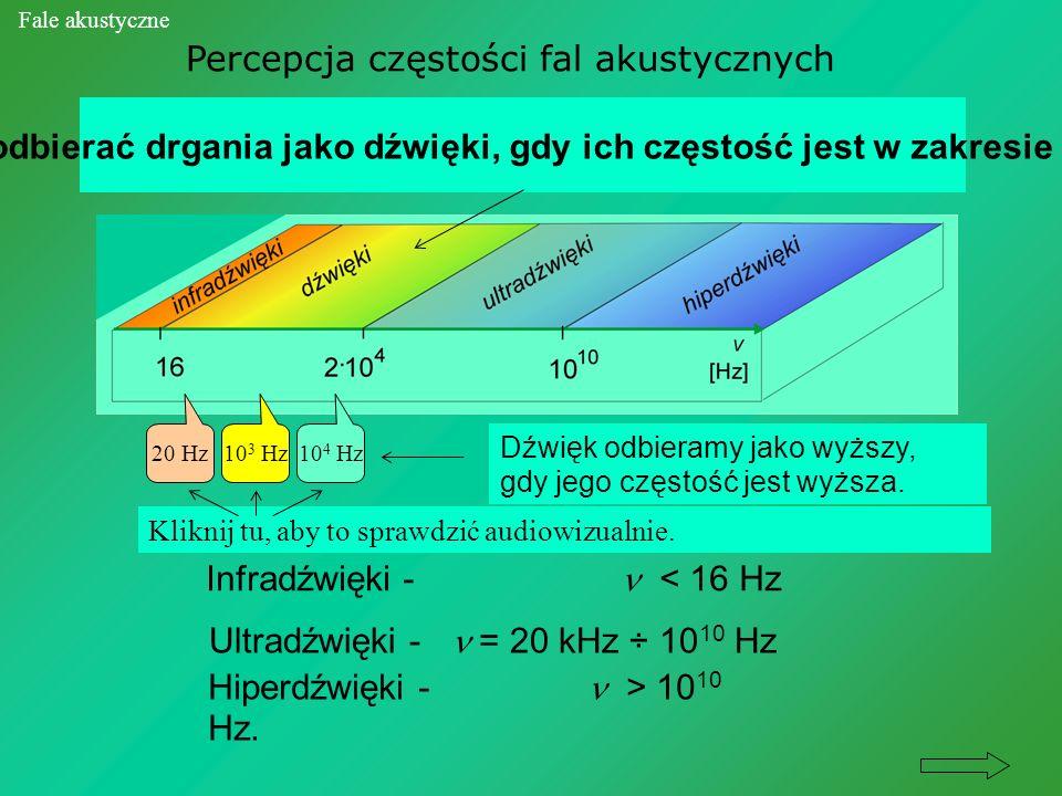 Percepcja częstości fal akustycznych Infradźwięki - < 16 Hz Nasze ucho może odbierać drgania jako dźwięki, gdy ich częstość jest w zakresie = 16 Hz -