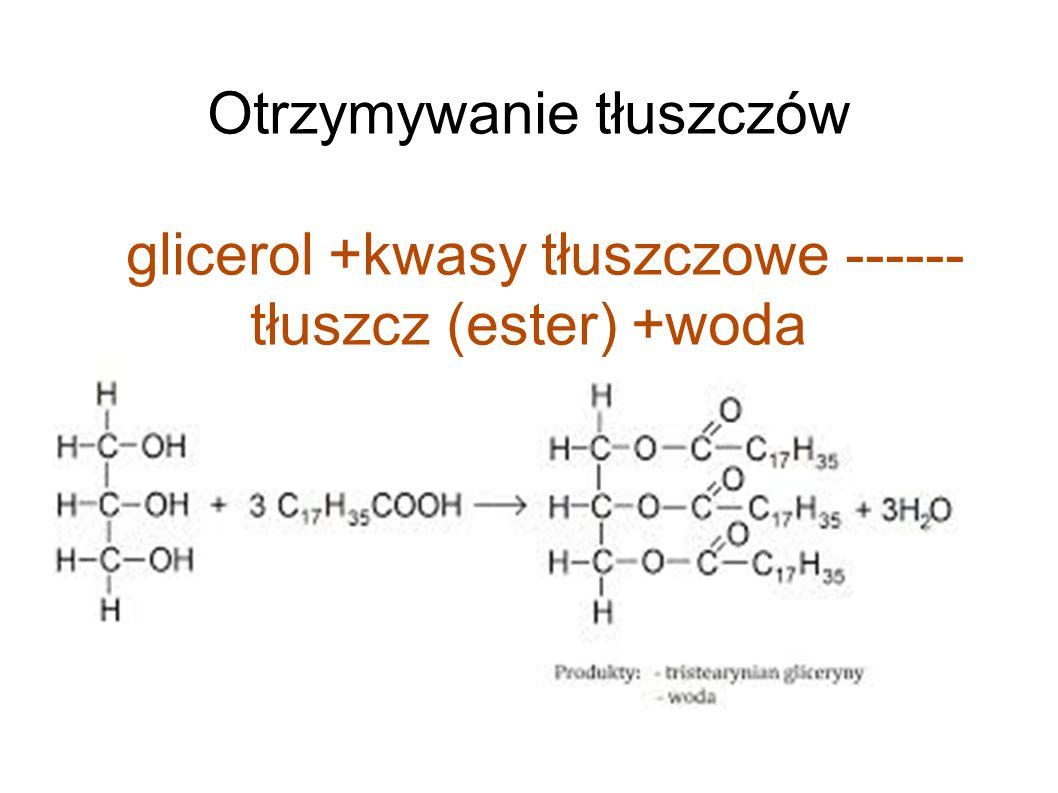 Otrzymywanie tłuszczów glicerol +kwasy tłuszczowe ------ tłuszcz (ester) +woda
