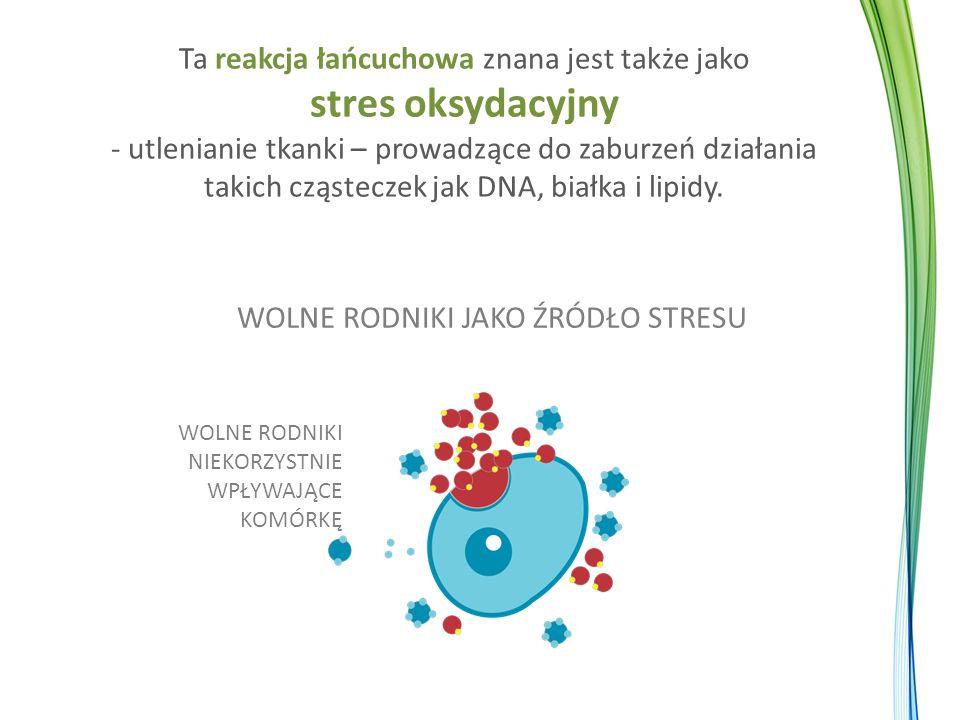 Ta reakcja łańcuchowa znana jest także jako stres oksydacyjny - utlenianie tkanki – prowadzące do zaburzeń działania takich cząsteczek jak DNA, białka i lipidy.