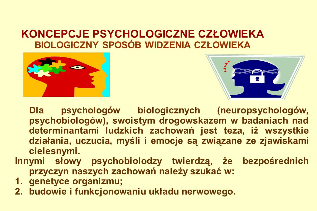 KONCEPCJE PSYCHOLOGICZNE CZŁOWIEKA BEHAWIORYZM Konkludując, człowiek w teorii behawiorystycznej jest zewnątrz sterowny, a modelowanie człowieka doskonałego polega na kreacji doskonałego środowiska.