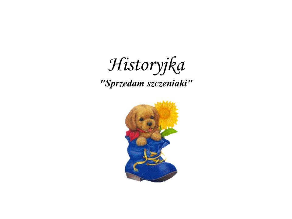 Historyjka Sprzedam szczeniaki