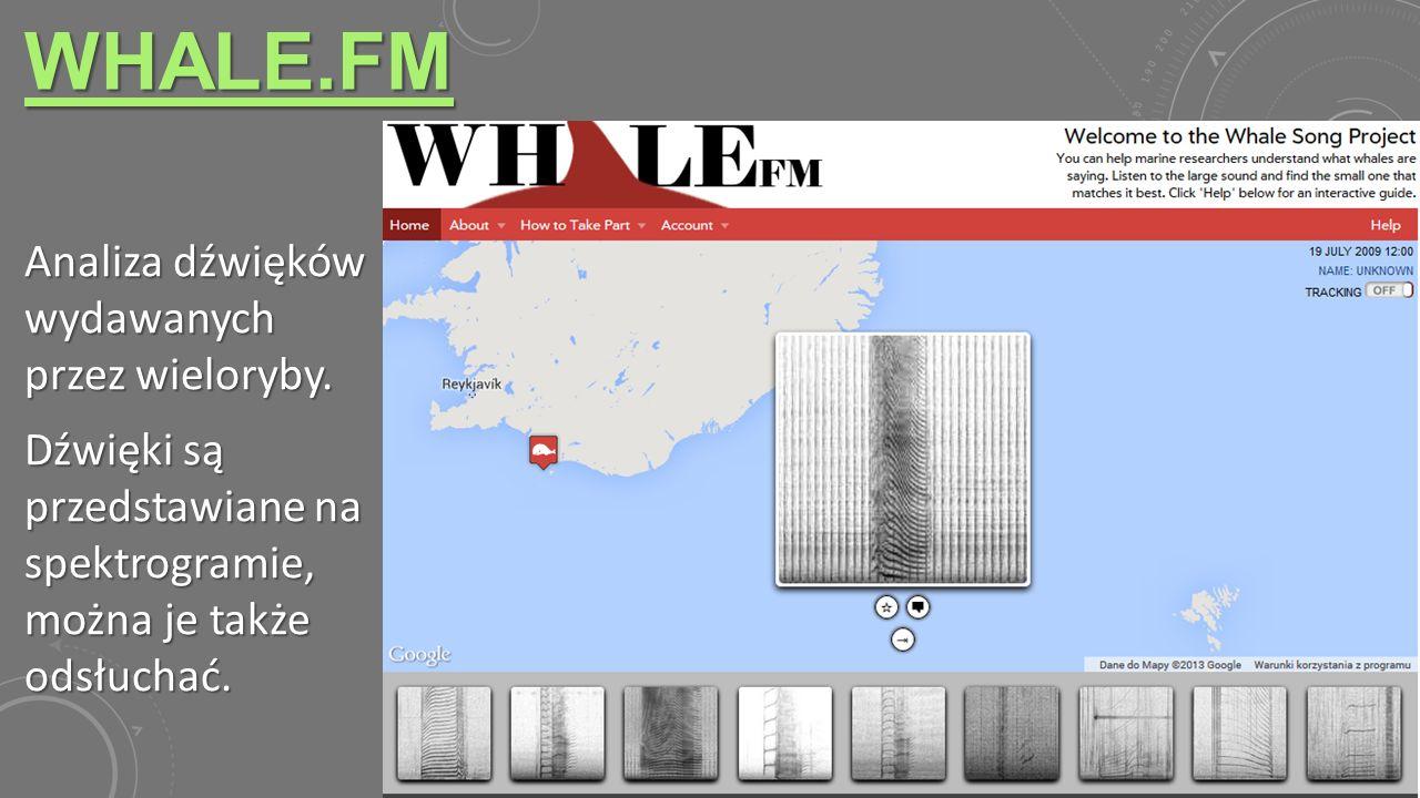 WHALE.FM Analiza dźwięków wydawanych przez wieloryby. Dźwięki są przedstawiane na spektrogramie, można je także odsłuchać.