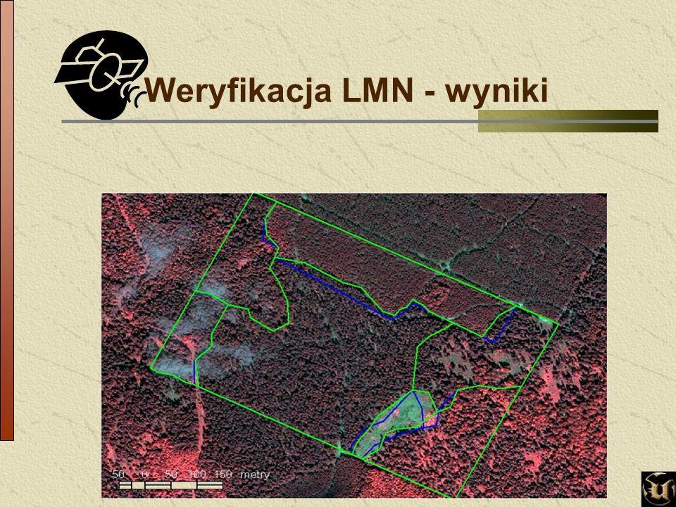 Weryfikacja LMN - wyniki