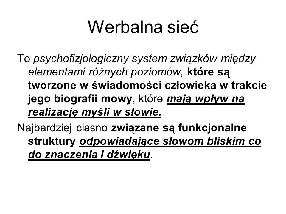 Werbalna sieć To psychofizjologiczny system związków między elementami różnych poziomów, które są tworzone w świadomości człowieka w trakcie jego biografii mowy, które mają wpływ na realizację myśli w słowie.