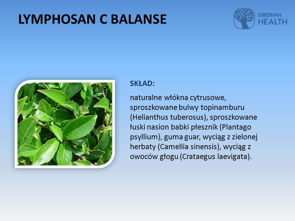 SKŁAD: naturalne włókna cytrusowe, sproszkowane bulwy topinamburu (Helianthus tuberosus), sproszkowane łuski nasion babki płesznik (Plantago psyllium), guma guar, wyciąg z zielonej herbaty (Camellia sinensis), wyciąg z owoców głogu (Crataegus laevigata).