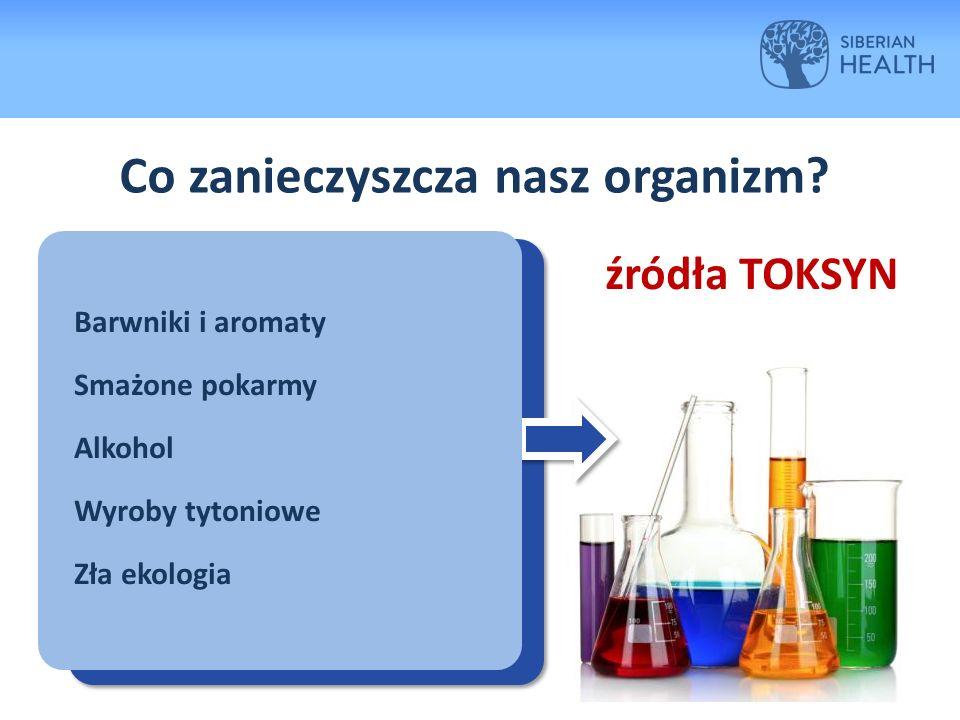 Co zanieczyszcza nasz organizm.