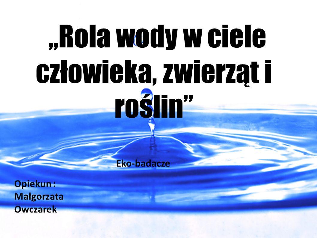 """""""Rola wody w ciele człowieka, zwierząt i roślin"""" Eko-badacze Opiekun : Małgorzata Owczarek"""