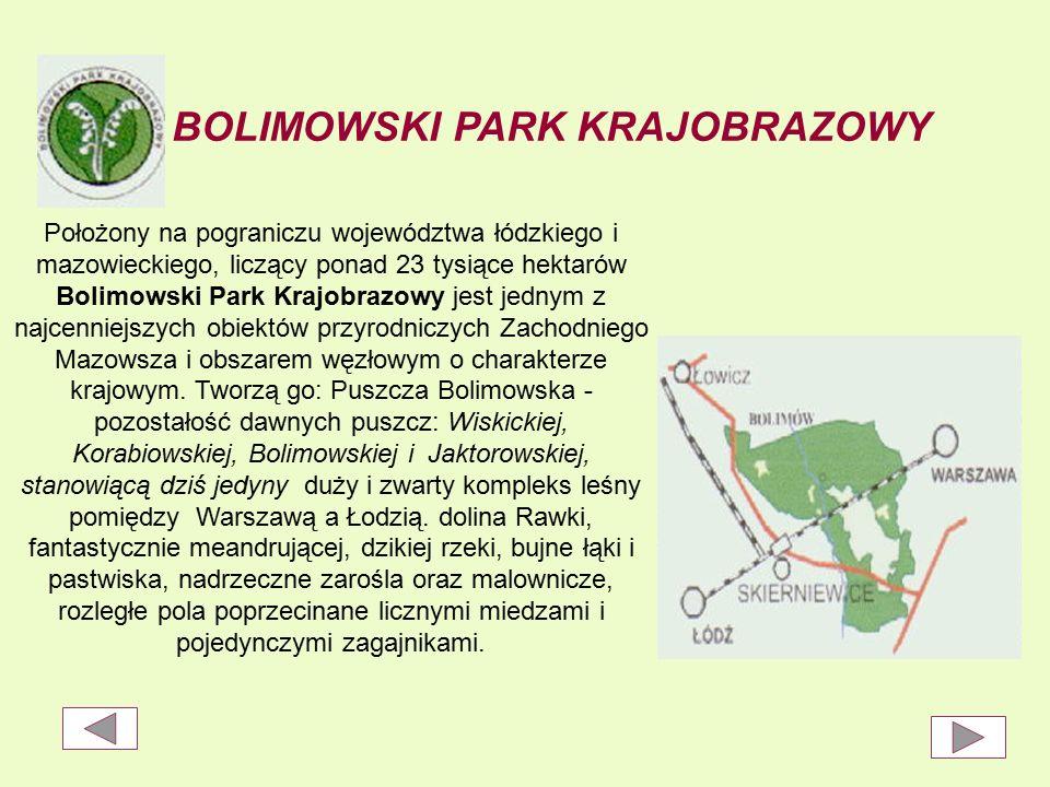 BOLIMOWSKI PARK KRAJOBRAZOWY Położony na pograniczu województwa łódzkiego i mazowieckiego, liczący ponad 23 tysiące hektarów Bolimowski Park Krajobrazowy jest jednym z najcenniejszych obiektów przyrodniczych Zachodniego Mazowsza i obszarem węzłowym o charakterze krajowym.