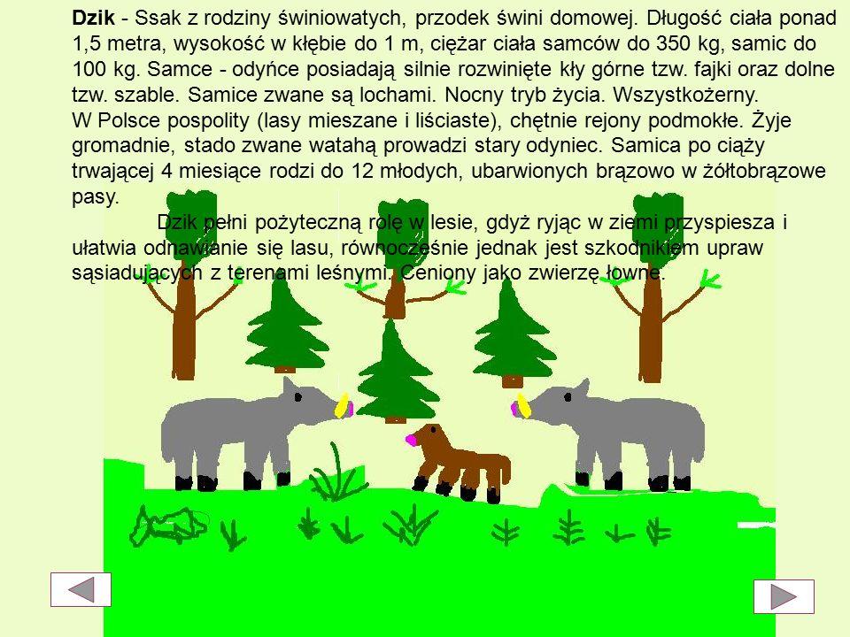 W bolimowskim Parku Krajobrazowym występuje obfita zwierzyna łowna (dziki, sarny, daniele).
