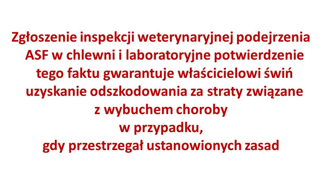 Zgłoszenie inspekcji weterynaryjnej podejrzenia ASF w chlewni i laboratoryjne potwierdzenie tego faktu gwarantuje właścicielowi świń uzyskanie odszkodowania za straty związane z wybuchem choroby w przypadku, gdy przestrzegał ustanowionych zasad