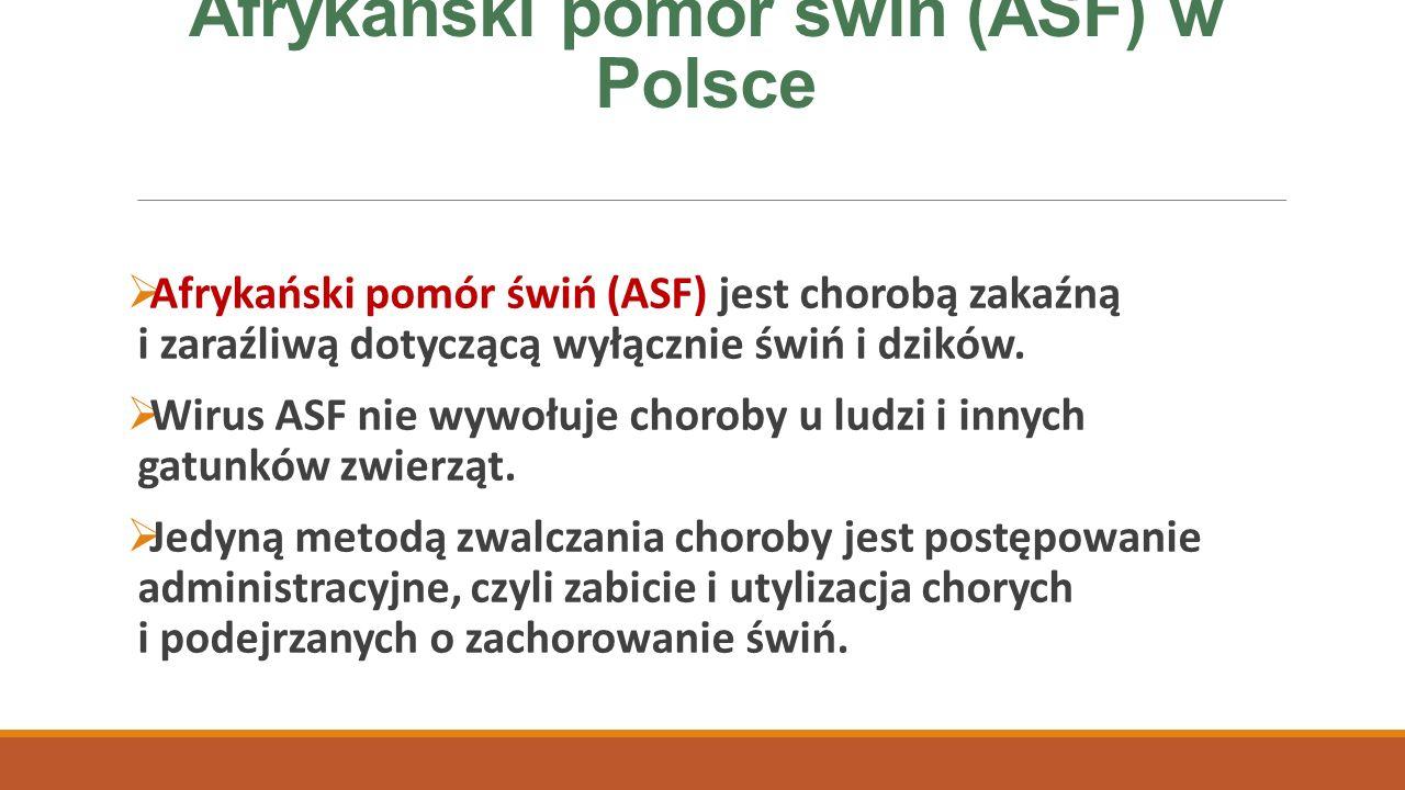 Afrykański pomór świń (ASF) w Polsce  Chorobę zwalcza się wybijając zakażone stada oraz stada ze strefy zapowietrzonej, nie ma szczepionki zapobiegającej zachorowaniu oraz jest zakaz leczenia.
