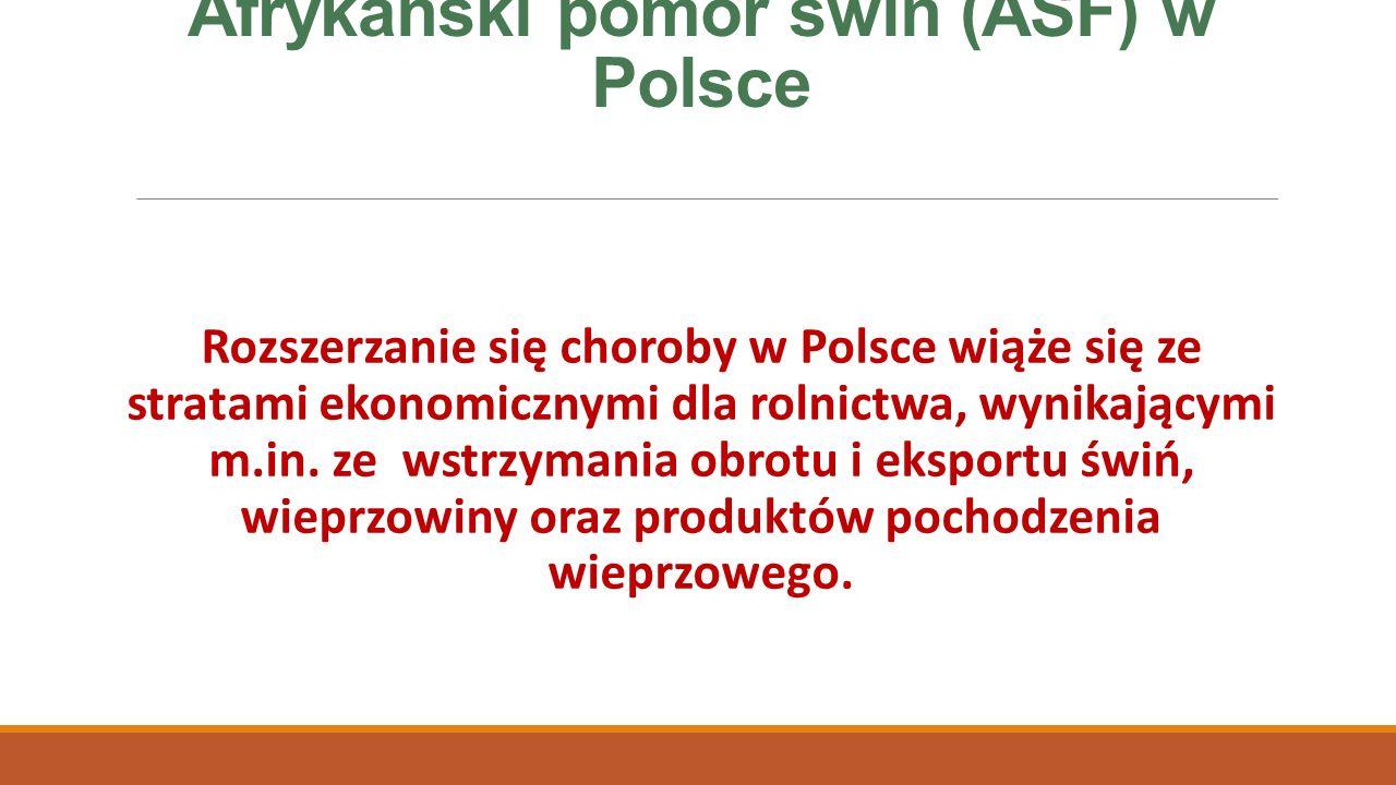Afrykański pomór świń (ASF) w Polsce Rozszerzanie się choroby w Polsce wiąże się ze stratami ekonomicznymi dla rolnictwa, wynikającymi m.in.
