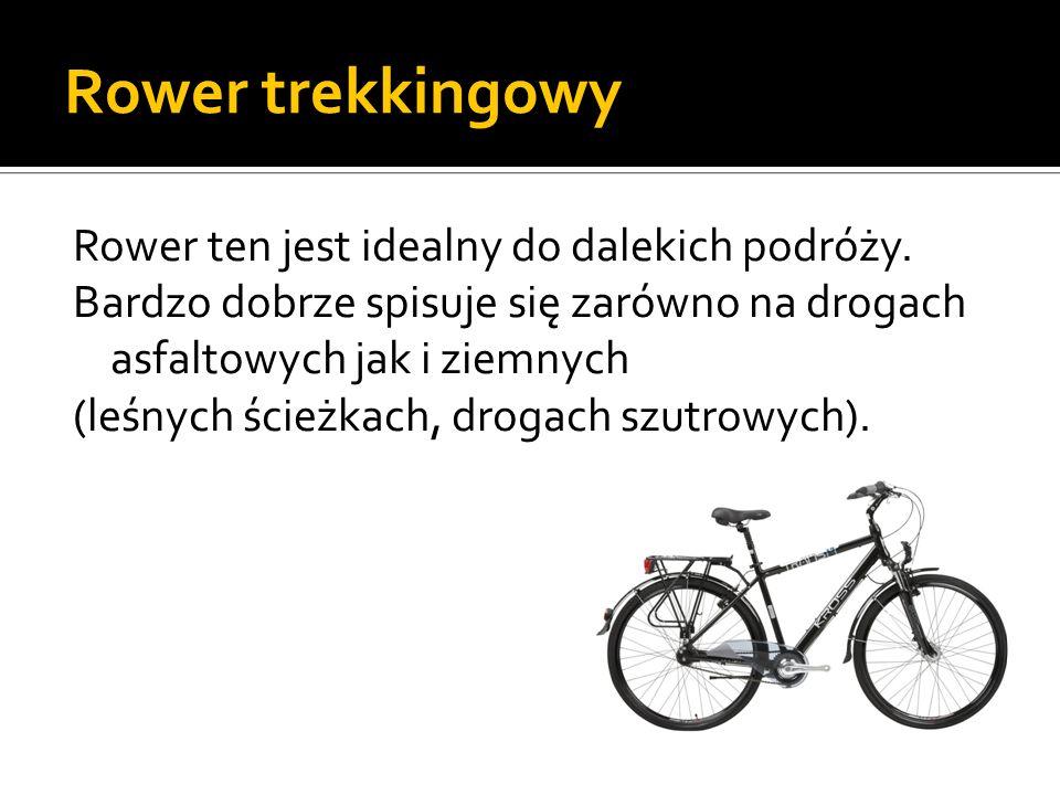 Rower trekkingowy Rower ten jest idealny do dalekich podróży. Bardzo dobrze spisuje się zarówno na drogach asfaltowych jak i ziemnych (leśnych ścieżka