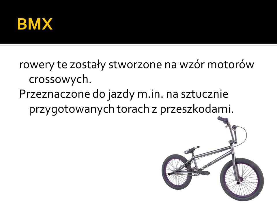 BMX rowery te zostały stworzone na wzór motorów crossowych. Przeznaczone do jazdy m.in. na sztucznie przygotowanych torach z przeszkodami.