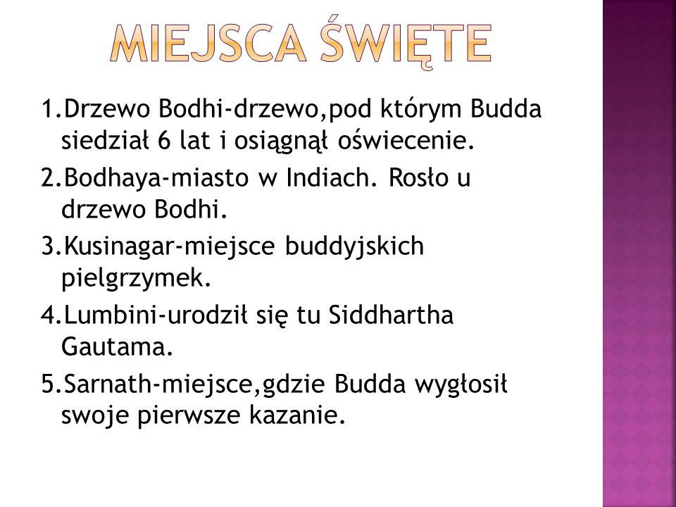 1.Drzewo Bodhi-drzewo,pod którym Budda siedział 6 lat i osiągnął oświecenie. 2.Bodhaya-miasto w Indiach. Rosło u drzewo Bodhi. 3.Kusinagar-miejsce bud