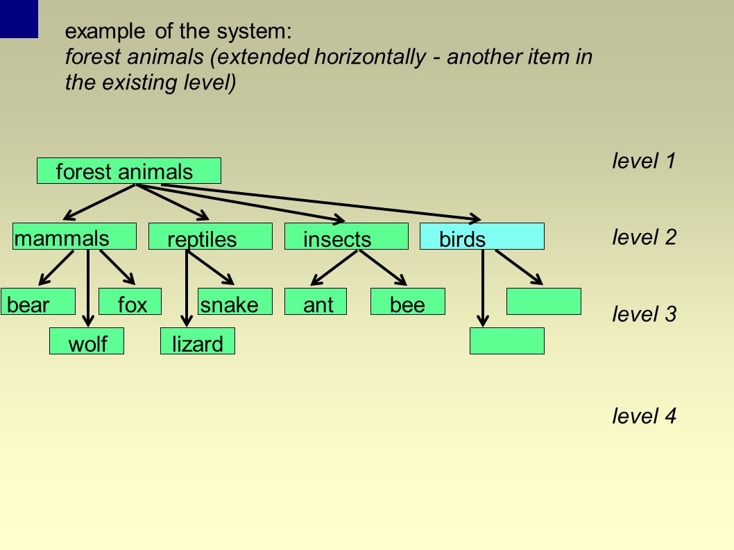 example of the system: forest animals (extended horizontally - another item in the existing level) birds level 1 level 2 level 3 level 4 forest animals reptilesinsects mammals foxbear wolf snake lizard antbee