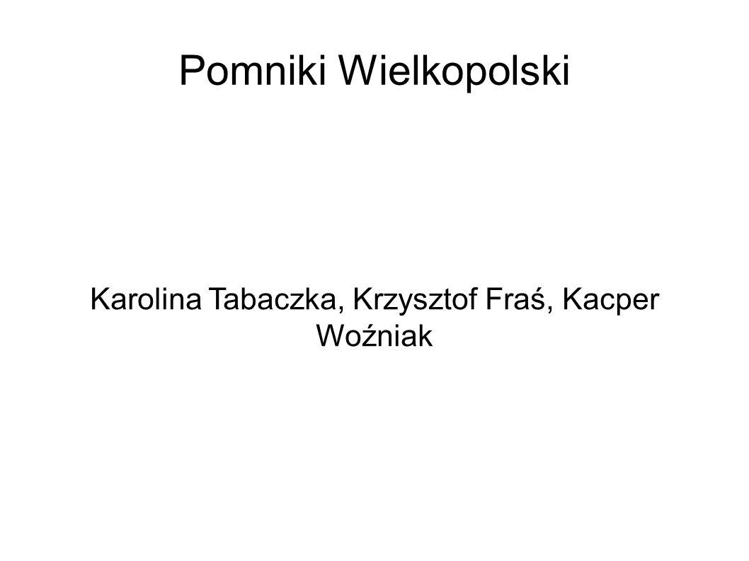 Pomniki Wielkopolski Karolina Tabaczka, Krzysztof Fraś, Kacper Woźniak