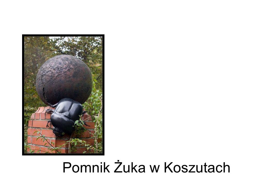 Pomnik Żuka w Koszutach