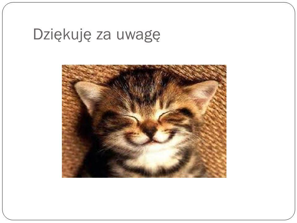 Źródła: https://pl.wikipedia.org/wiki/Polskie_skrzypce https://pl.wikipedia.org/wiki/Kategoria:Polskie_instrumenty_ludowe https://www.google.pl/search q=Basetla&espv=2&biw=1366&bih=667&source=lnms&tbm=isc h&sa=X&ved=0ahUKEwjIl5ihhZbNAhVEVywKHZ7bAioQ_AUIBigB#tbm=isch&q=Harmonia+( instrument) https://www.google.pl/search q=Basetla&espv=2&biw=1366&bih=667&source=lnms&tbm=isc h&sa=X&ved=0ahUKEwjIl5ihhZbNAhVEVywKHZ7bAioQ_AUIBigB#tbm=isch&q=Harmonia+( instrument) https://www.google.pl/search q=Basetla&espv=2&biw=1366&bih=667&source=lnms&tbm=isc h&sa=X&ved=0ahUKEwjIl5ihhZbNAhVEVywKHZ7bAioQ_AUIBigB#tbm=isch&q=fidel+p%C5 %82ocka https:// https://www.google.pl/search q=Basetla&espv=2&biw=1366&bih=667&source=lnms&tbm=isc h&sa=X&ved=0ahUKEwjIl5ihhZbNAhVEVywKHZ7bAioQ_AUIBigB#tbm=isch&q=Diabelskie+ skrzypce https:// https://www.google.pl/search q=Basetla&espv=2&biw=1366&bih=667&source=lnms&tbm=isc h&sa=X&ved=0ahUKEwjIl5ihhZbNAhVEVywKHZ7bAioQ_AUIBigB#tbm=isch&q=Diabelskie+ skrzypce https:// https://www.google.pl/search q=Basetla&espv=2&biw=1366&bih=667&source=lnms&tb m=isch&sa=X&ved=0ahUKEwjIl5ihhZbNAhVEVywKHZ7bAioQ_AUIBigB#tbm=isch&q= u%C5%9Bmiech&imgrc=_ https://www.google.pl/search q=Basetla&espv=2&biw=1366&bih=667&source=lnms&tb m=isch&sa=X&ved=0ahUKEwjIl5ihhZbNAhVEVywKHZ7bAioQ_AUIBigB#tbm=isch&q= u%C5%9Bmiech&imgrc