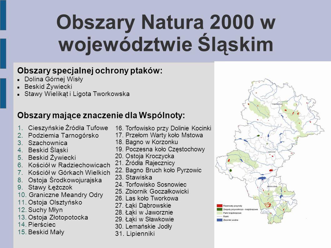 Obszary Natura 2000 w województwie Śląskim 1.Cieszyńskie Źródła Tufowe 2.Podziemia Tarnogórsko 3.Szachownica 4.Beskid Śląski 5.Beskid Żywiecki 6.Kości